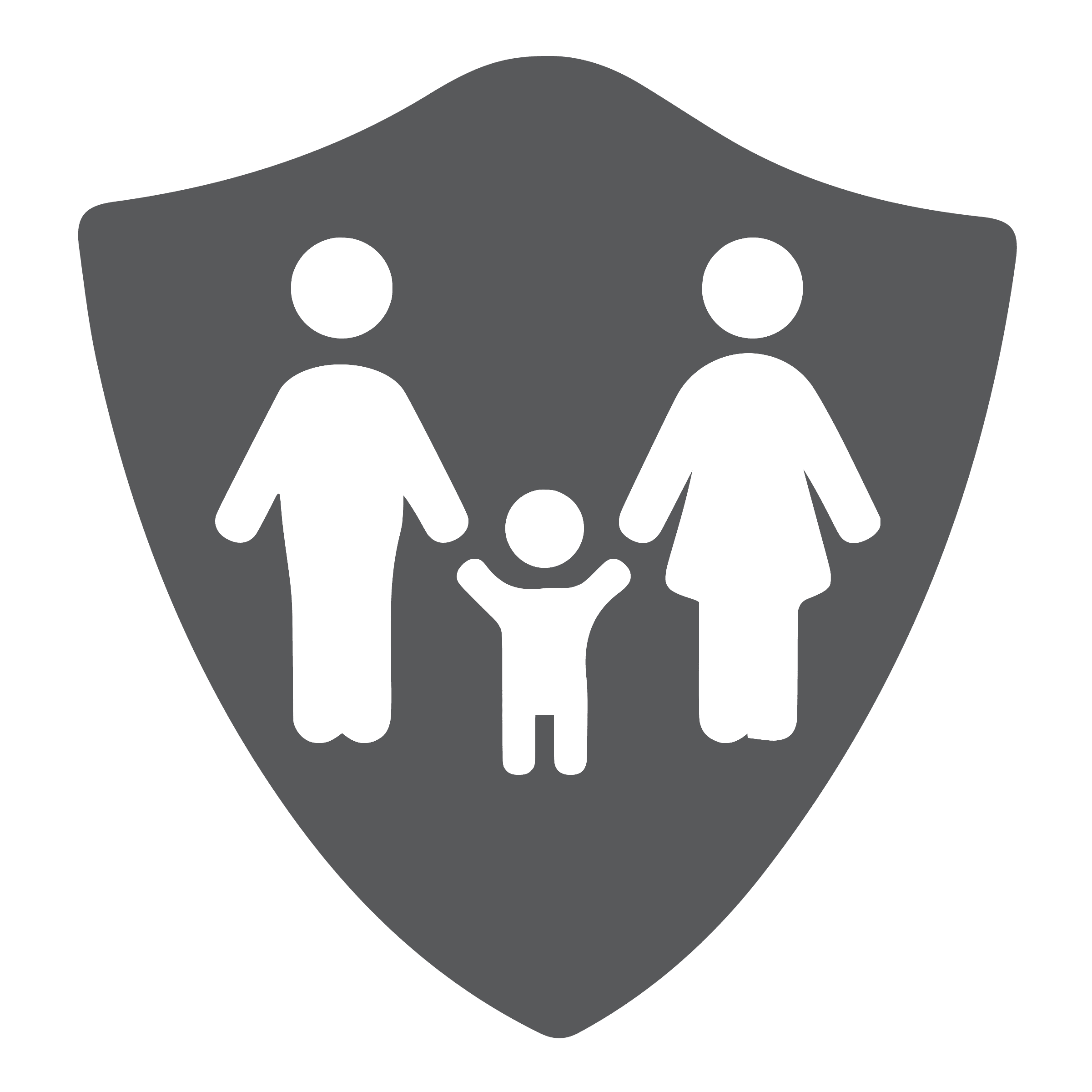 Safe and Secure icon